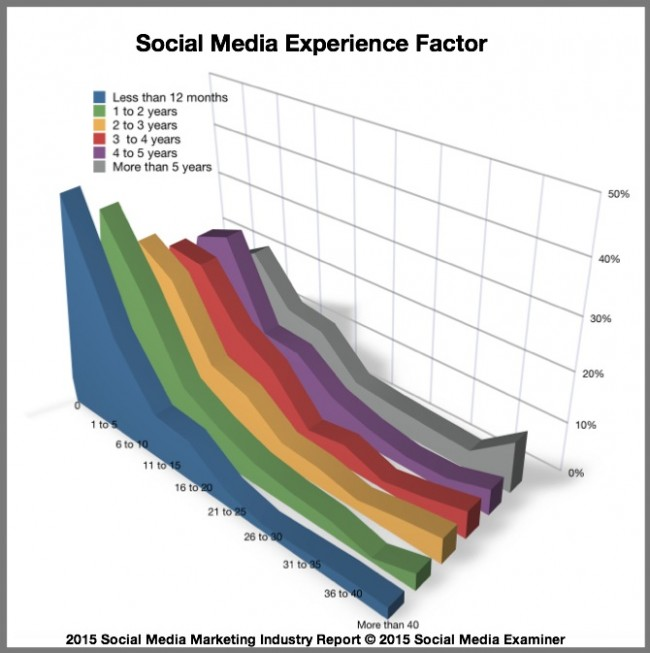 2015 Social Media Marketing Industry Report-Experience Factor-1