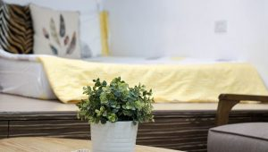 8 tiny changes that will make your home a happier place